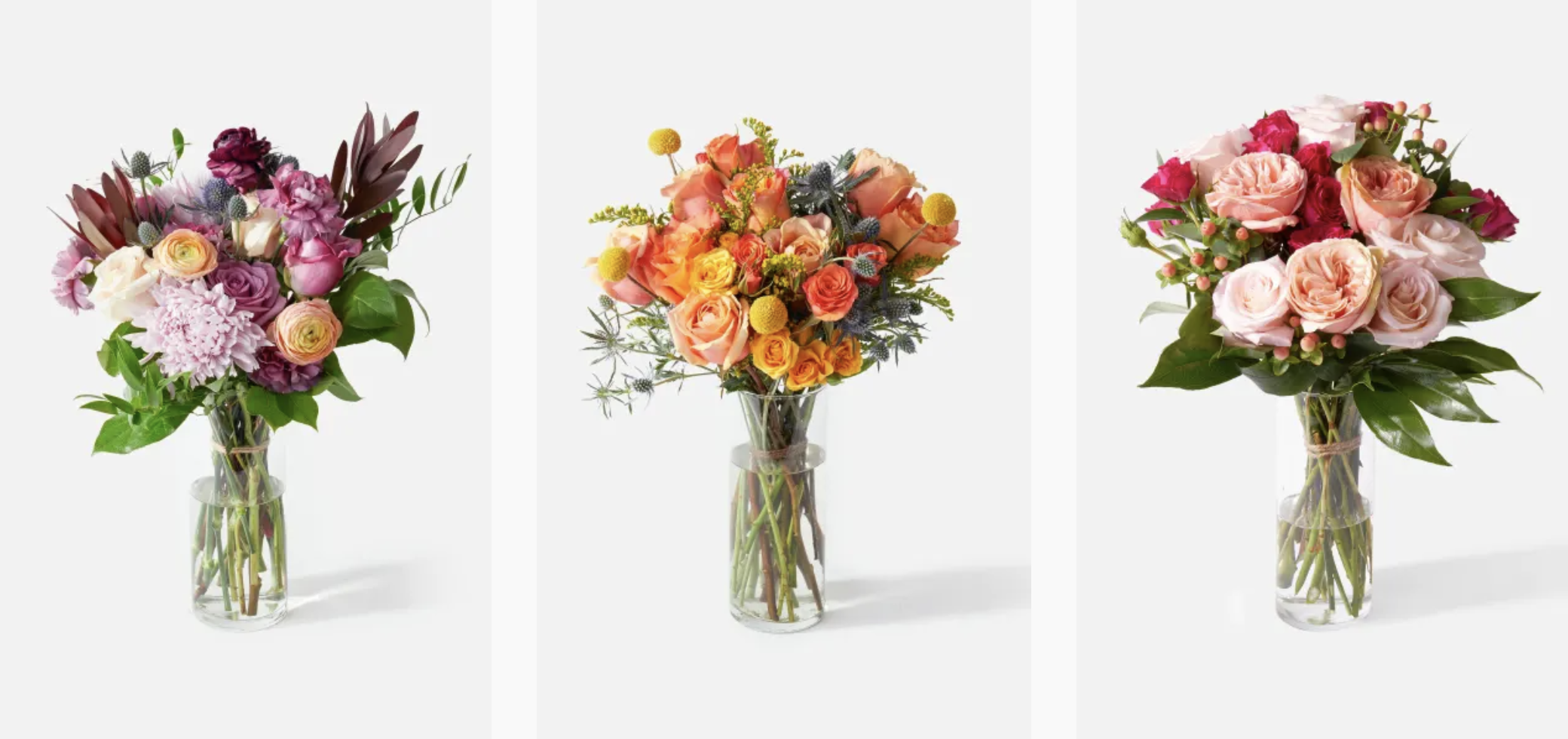 Urban Stems flowers