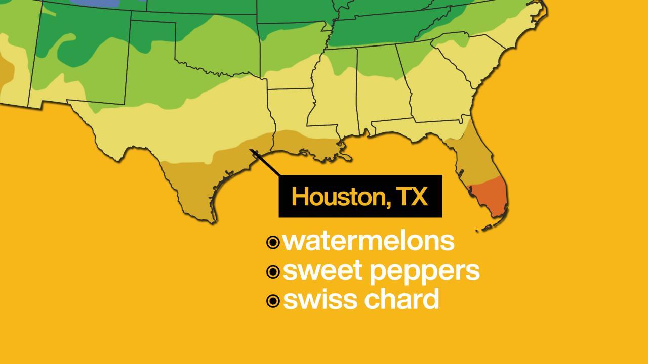 Zone Map Houston