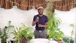 TikTok's Garden Marcus Reveals Five Tools Perfect for New Gardeners   Hot Tip