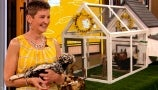 The Chicken Chick Shows Drew How Easy It Is to Make a Coop in Your Backyard