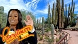 Nik Fields Shows Off Her Beautiful Hometown of Phoenix | Hometown Spirit